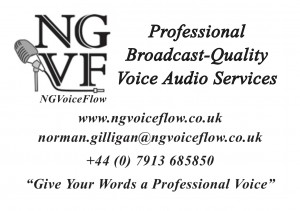 NGVoiceFlow Business Card (Front Side) email signature