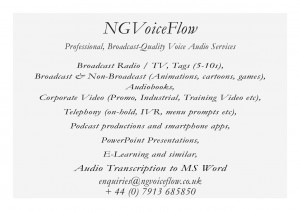 NGVoiceFlow Business Card (Reverse)